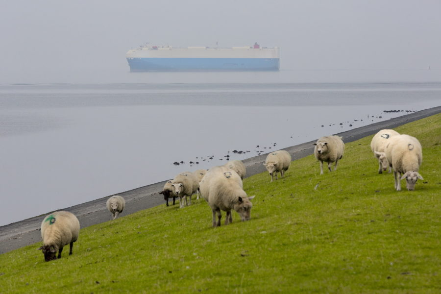 Nederland, The Netherlands,    Foto: Bert Spiertz